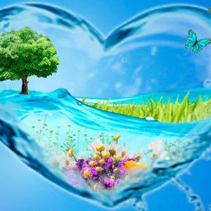 Элемент воды